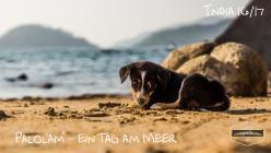 Palolem - ein Tag am Meer