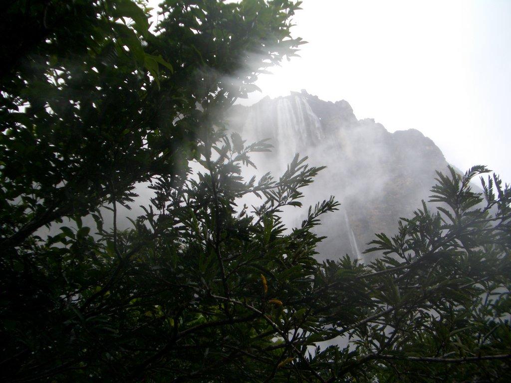 Salto Angel - höchster Wasserfall der Welt