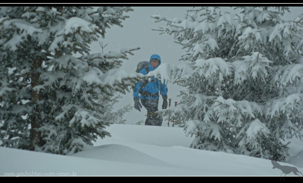 The Whiteout Expeditions