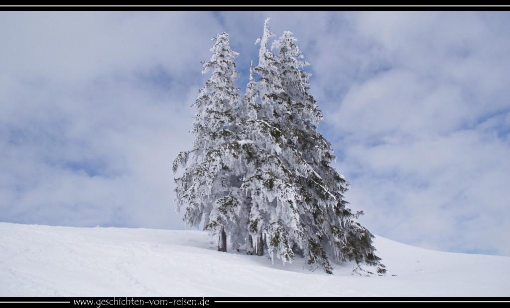 Skitour auf den Spießer