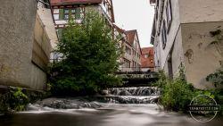 Summer-Ulm-III-104